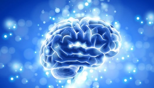 6 Suggestions for a Healthy Brain