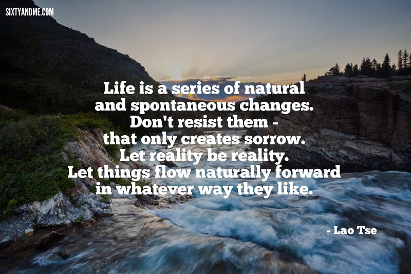 Lao Tse - Life is a series of natural and spontaneous changes