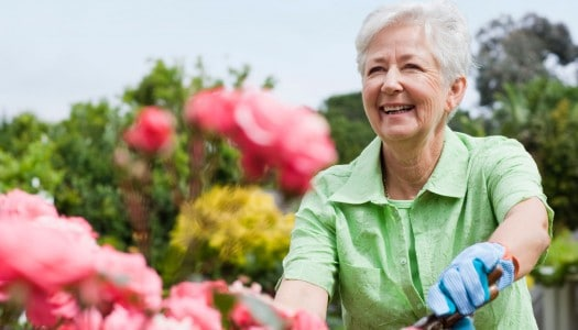 Want to Get More from Life After 60? Love, Explore and Create!