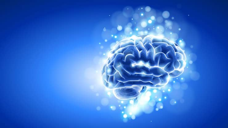 Why-Older-Brains-Are-Amazing