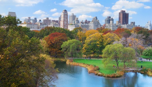 How Our Relationships with Our Home Cities Change – One Boomer's Take on New York