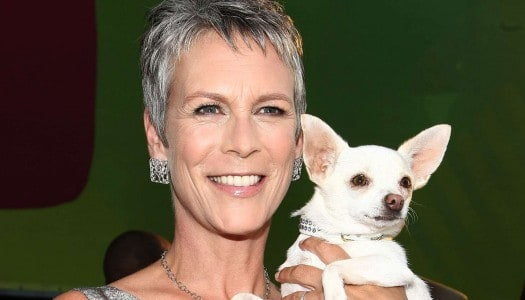 This Jamie Lee Curtis Quote About Aging is Right on the Money