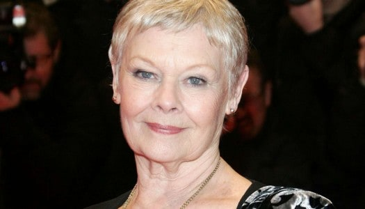 Judi Dench Doesn't Allow These Words in Her House and Neither Do I!