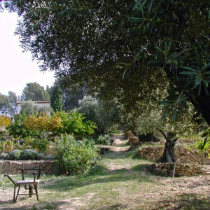 Un échange de deux mois dans un vignoble privé du Var, près de Toulon