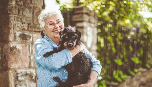 Puppy Love: How Adopting a Dog Can Bring Joy to Women Over 60