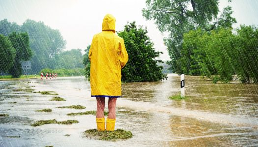Flooding in NC, Political Storms in Washington and 10 Ways to Boost Your Memory