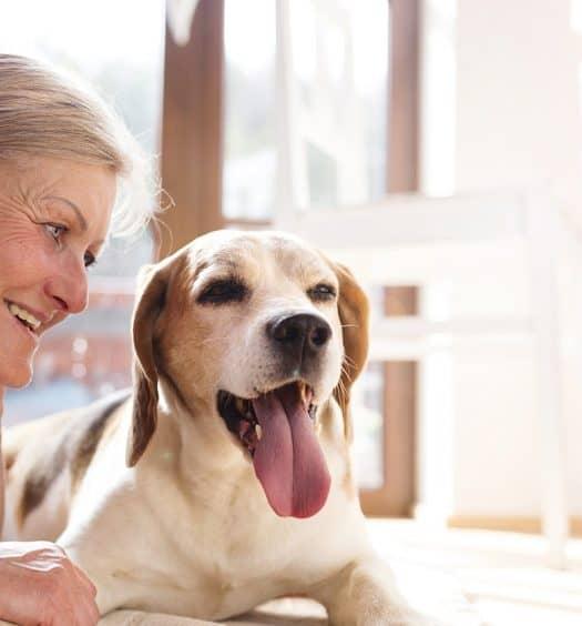 Senior woman dog pets
