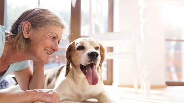 Senior woman dog pets