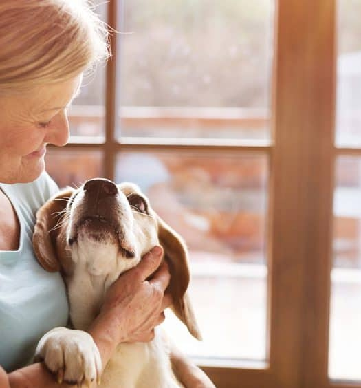 Senior woman pet trust