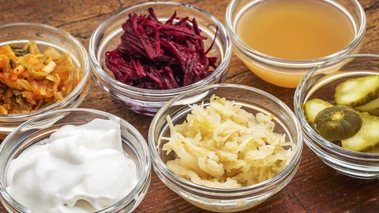 fermented food probiotics memory
