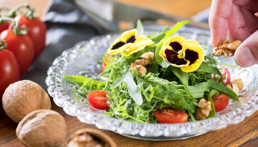 How to Make Your Meals Look Amazing with Edible Flowers