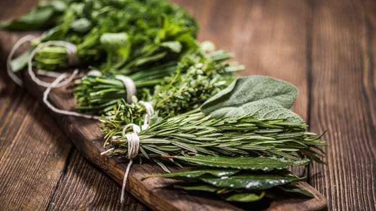 anxiety herbal medicine
