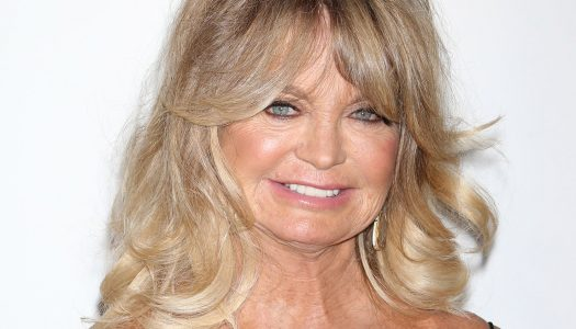 Goldie Hawn Steps Out in Style for a Great Cause