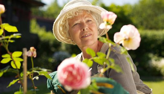 Our Perceptions About Aging Matter: Look for Roses, Not Weeds