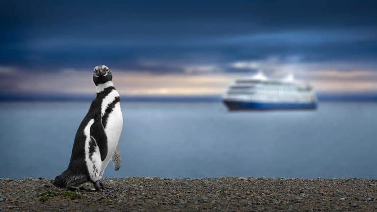 What Is Expedition Cruising and Why Is It Becoming so Popular Among Women Over 60