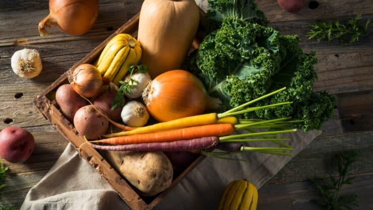 fall nutrition tips and recipe